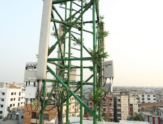 edotco, the First Towerco to Deploy Innovative Bamboo Telecom Tower